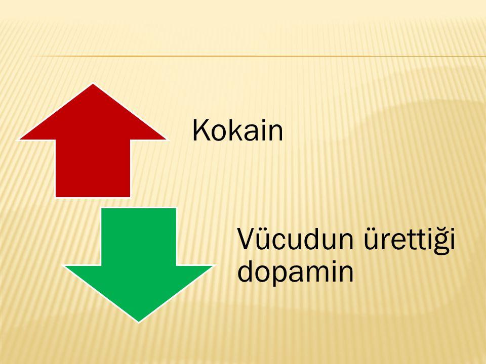 Kokain Vücudun ürettiği dopamin