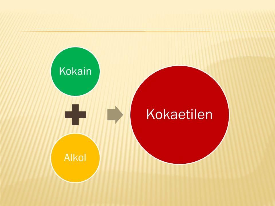  İnsan karaciğeri bu iki maddeyi birleştirerek 'cocaethylene' (kokaetilen) denilen bir madde üretir.