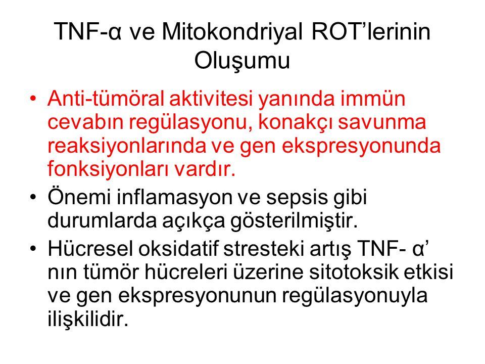TNF-α ve Mitokondriyal ROT'lerinin Oluşumu Anti-tümöral aktivitesi yanında immün cevabın regülasyonu, konakçı savunma reaksiyonlarında ve gen ekspresy