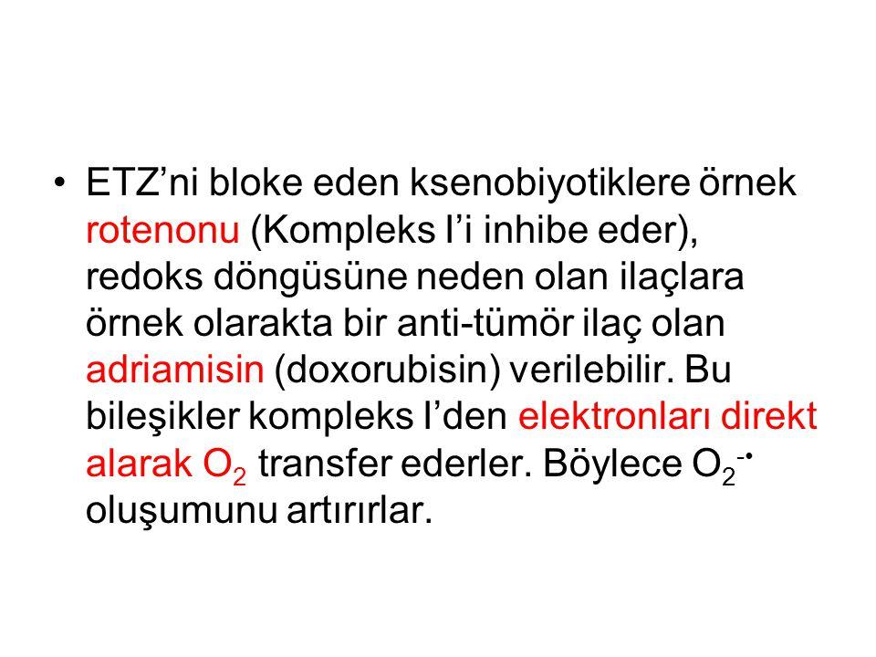 ETZ'ni bloke eden ksenobiyotiklere örnek rotenonu (Kompleks I'i inhibe eder), redoks döngüsüne neden olan ilaçlara örnek olarakta bir anti-tümör ilaç