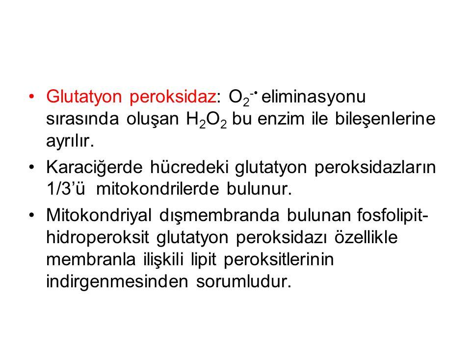 Glutatyon peroksidaz: O 2 - eliminasyonu sırasında oluşan H 2 O 2 bu enzim ile bileşenlerine ayrılır. Karaciğerde hücredeki glutatyon peroksidazların
