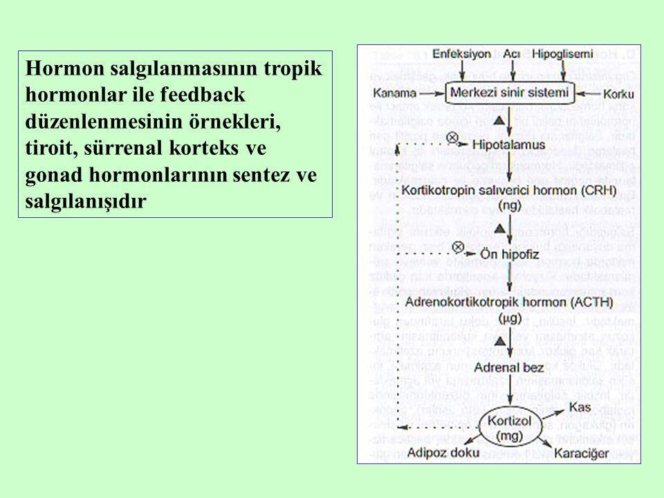 Hormon salgılanmasının tropik hormonlar ile feedback düzenlenmesinin örnekleri, tiroit, sürrenal korteks ve gonad hormonlarının sentez ve salgılanışıd