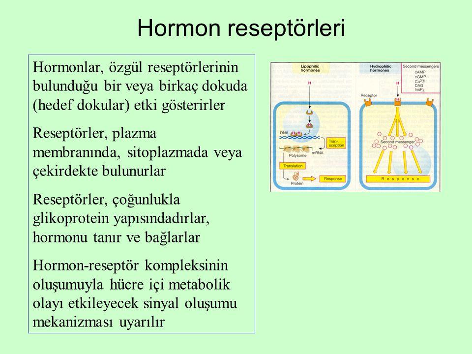 Hormon reseptörleri Hormonlar, özgül reseptörlerinin bulunduğu bir veya birkaç dokuda (hedef dokular) etki gösterirler Reseptörler, plazma membranında