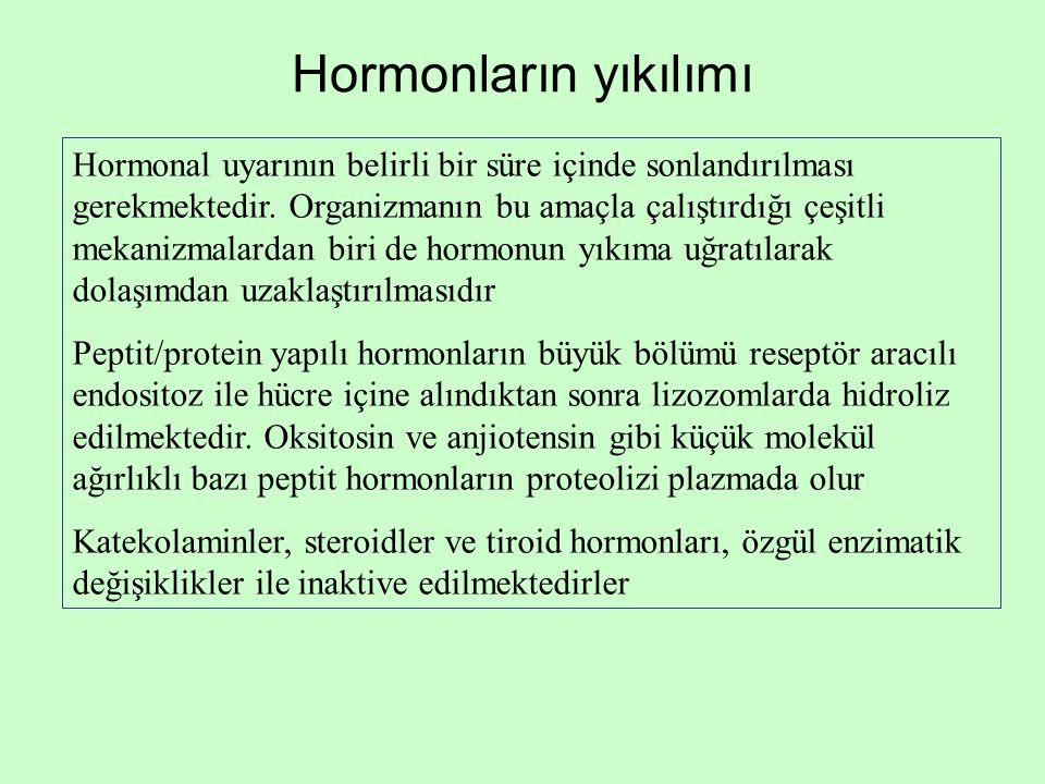 Hormonların yıkılımı Hormonal uyarının belirli bir süre içinde sonlandırılması gerekmektedir. Organizmanın bu amaçla çalıştırdığı çeşitli mekanizmalar