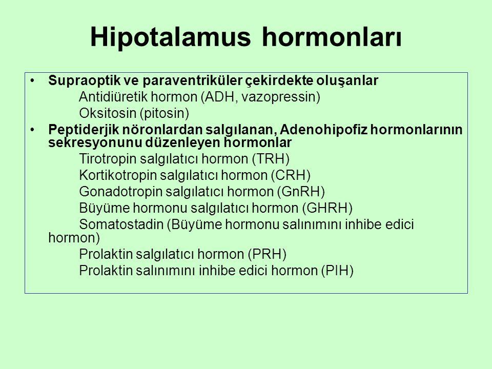 Hipotalamus hormonları Supraoptik ve paraventriküler çekirdekte oluşanlar Antidiüretik hormon (ADH, vazopressin) Oksitosin (pitosin) Peptiderjik nöron
