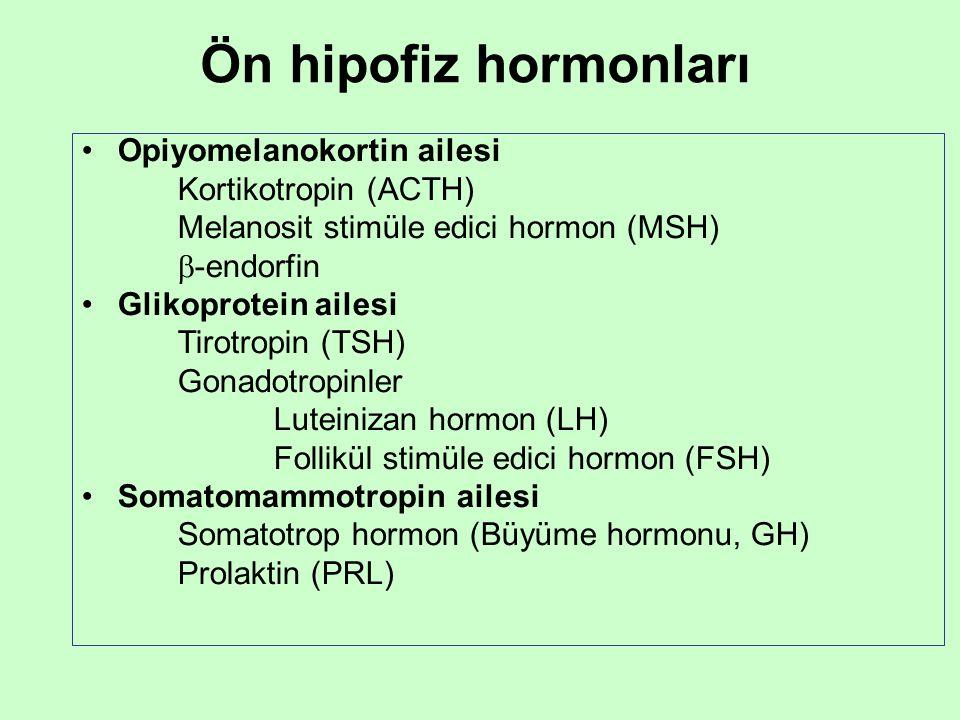 Ön hipofiz hormonları Opiyomelanokortin ailesi Kortikotropin (ACTH) Melanosit stimüle edici hormon (MSH)  -endorfin Glikoprotein ailesi Tirotropin (T