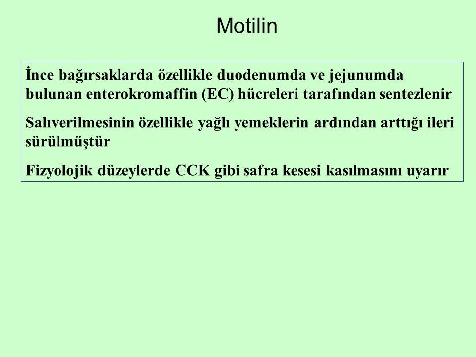 Motilin İnce bağırsaklarda özellikle duodenumda ve jejunumda bulunan enterokromaffin (EC) hücreleri tarafından sentezlenir Salıverilmesinin özellikle
