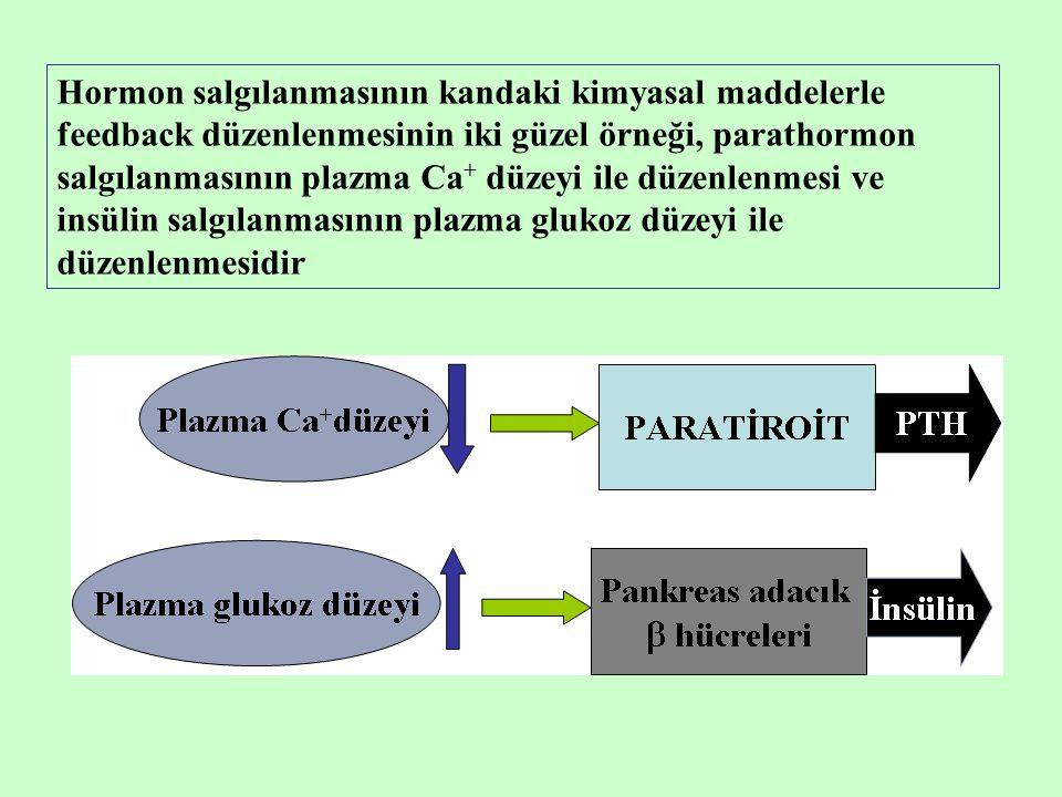 Hormon salgılanmasının kandaki kimyasal maddelerle feedback düzenlenmesinin iki güzel örneği, parathormon salgılanmasının plazma Ca + düzeyi ile düzen