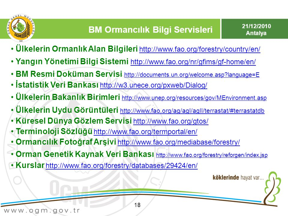 21/12/2010 Antalya 18 Ülkelerin Ormanlık Alan Bilgileri http://www.fao.org/forestry/country/en/http://www.fao.org/forestry/country/en/ Yangın Yönetimi
