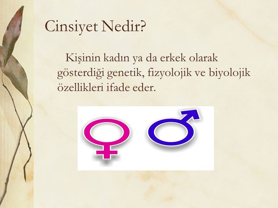 Cinsiyet Nedir? Kişinin kadın ya da erkek olarak gösterdiği genetik, fizyolojik ve biyolojik özellikleri ifade eder.