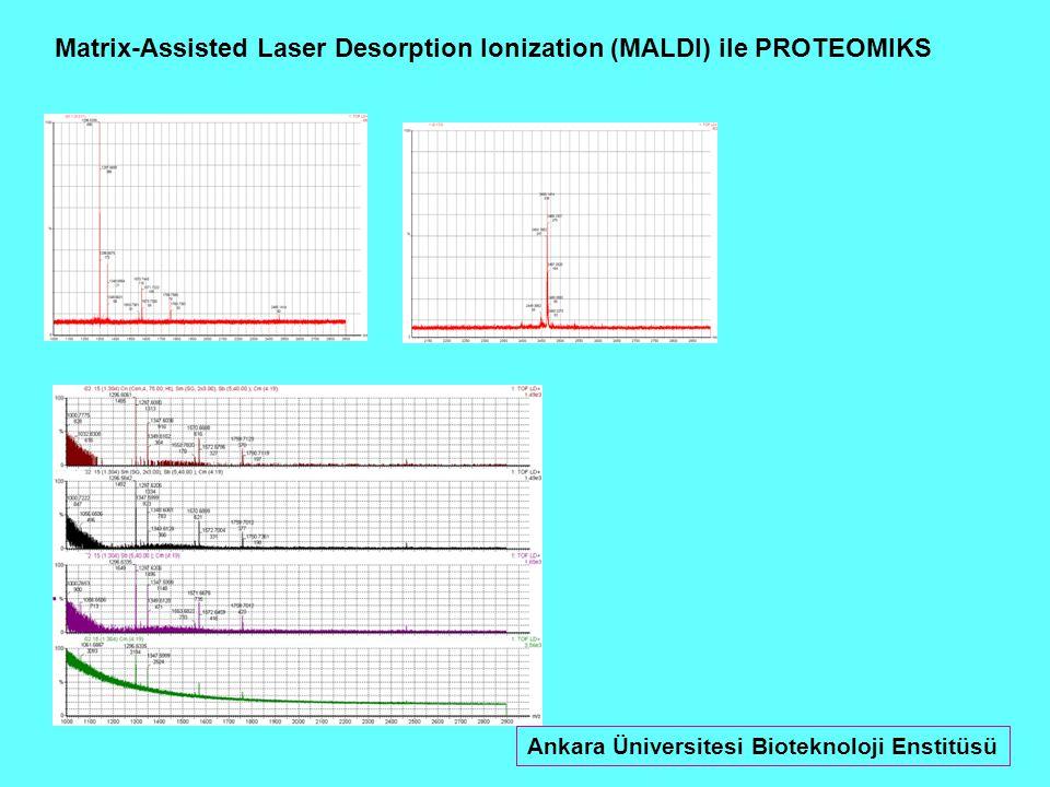 Matrix-Assisted Laser Desorption Ionization (MALDI) ile PROTEOMIKS Ankara Üniversitesi Bioteknoloji Enstitüsü