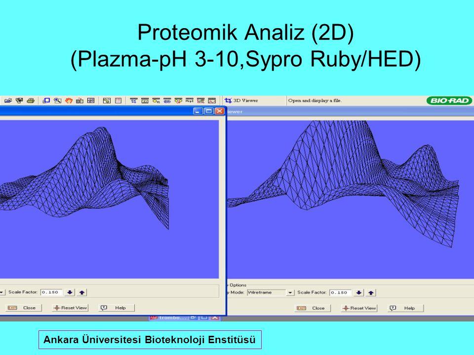 Proteomik Analiz (2D) (Plazma-pH 3-10,Sypro Ruby/HED) Ankara Üniversitesi Bioteknoloji Enstitüsü