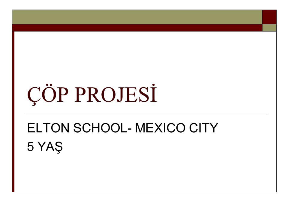 ÖZET:  Bu proje 5 yaş grubundaki çocukların çöplerin okullarında ve yaşadıkları şehirde hangi sorunları yarattığını, çöplerin çevreye etkisini ve Mexico-City'de çöp toplama işleminin aşamalarını nasıl keşfettiklerini göstermektedir.