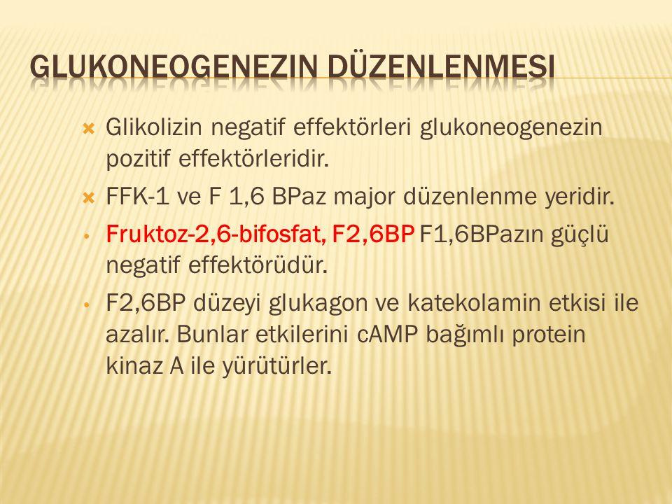  Glikolizin negatif effektörleri glukoneogenezin pozitif effektörleridir.  FFK-1 ve F 1,6 BPaz major düzenlenme yeridir. Fruktoz-2,6-bifosfat, F2,6B