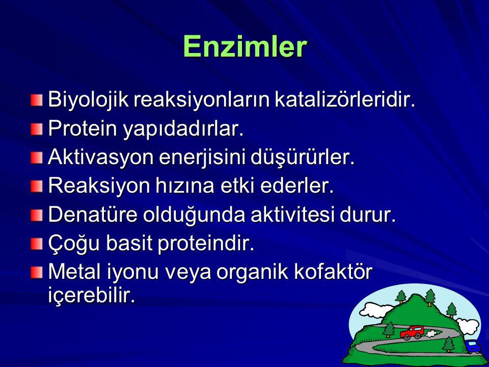 Enzimler Biyolojik reaksiyonların katalizörleridir. Protein yapıdadırlar. Aktivasyon enerjisini düşürürler. Reaksiyon hızına etki ederler. Denatüre ol