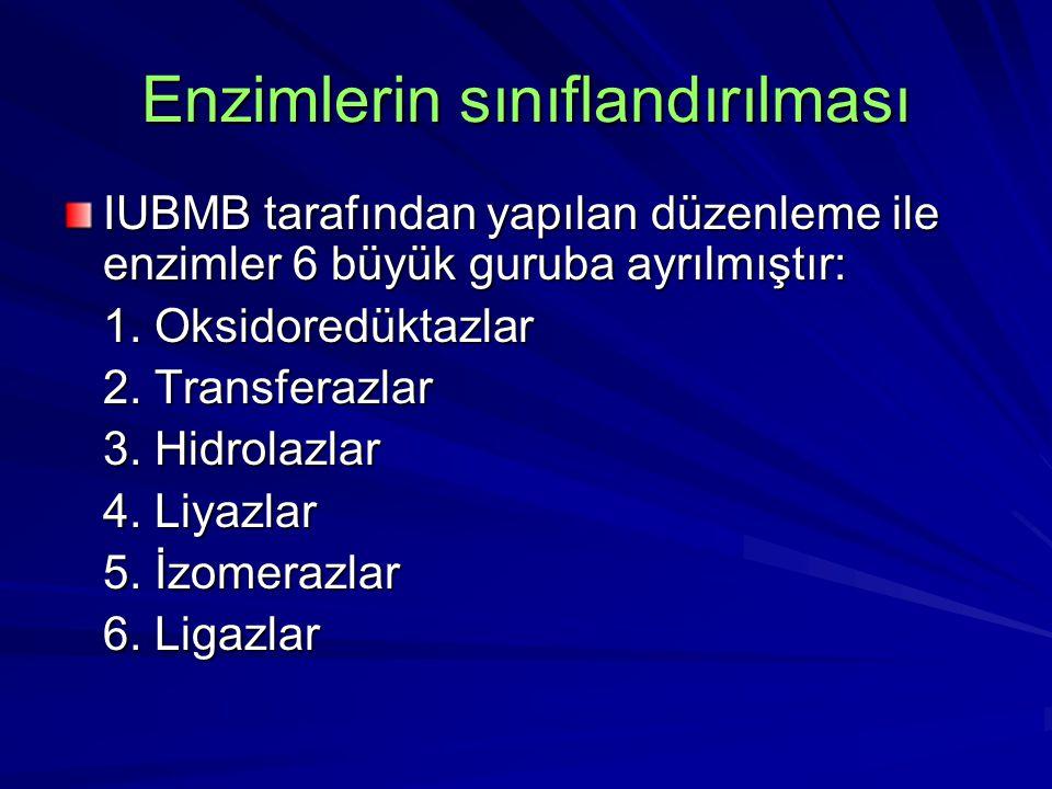 Enzimlerin sınıflandırılması IUBMB tarafından yapılan düzenleme ile enzimler 6 büyük guruba ayrılmıştır: 1. Oksidoredüktazlar 2. Transferazlar 3. Hidr