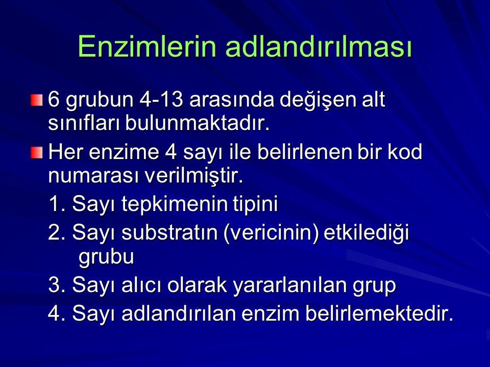 Enzimlerin adlandırılması 6 grubun 4-13 arasında değişen alt sınıfları bulunmaktadır. Her enzime 4 sayı ile belirlenen bir kod numarası verilmiştir. 1
