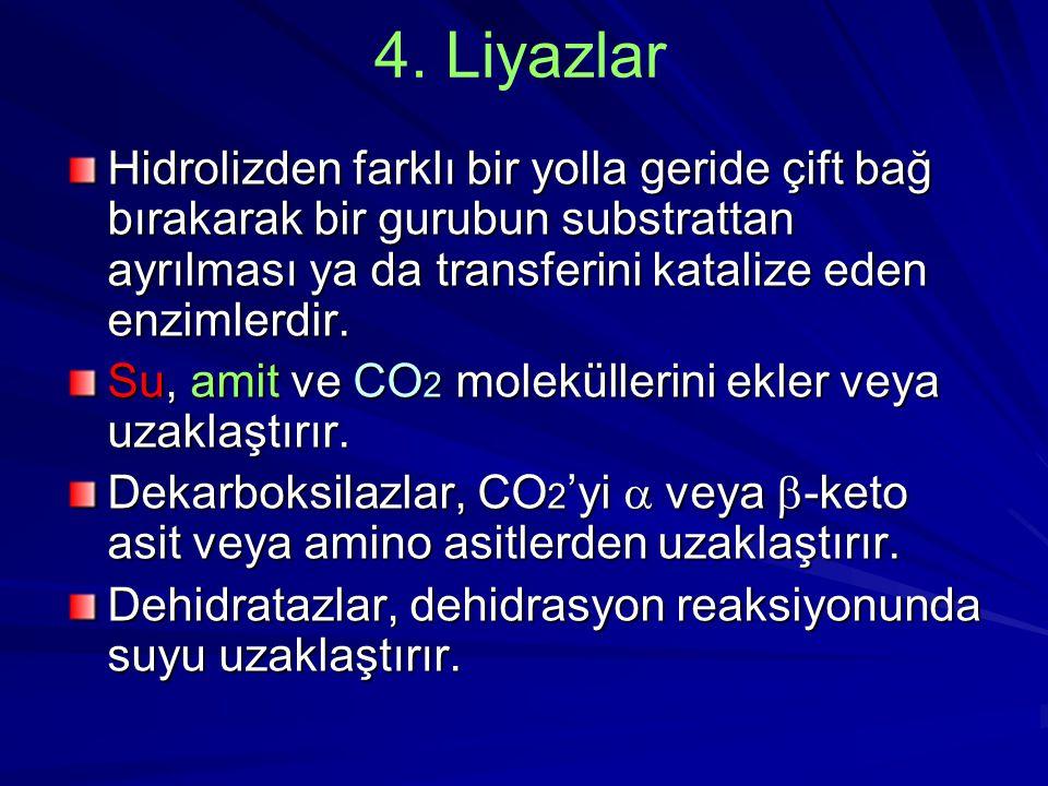 4. Liyazlar Hidrolizden farklı bir yolla geride çift bağ bırakarak bir gurubun substrattan ayrılması ya da transferini katalize eden enzimlerdir. Su,