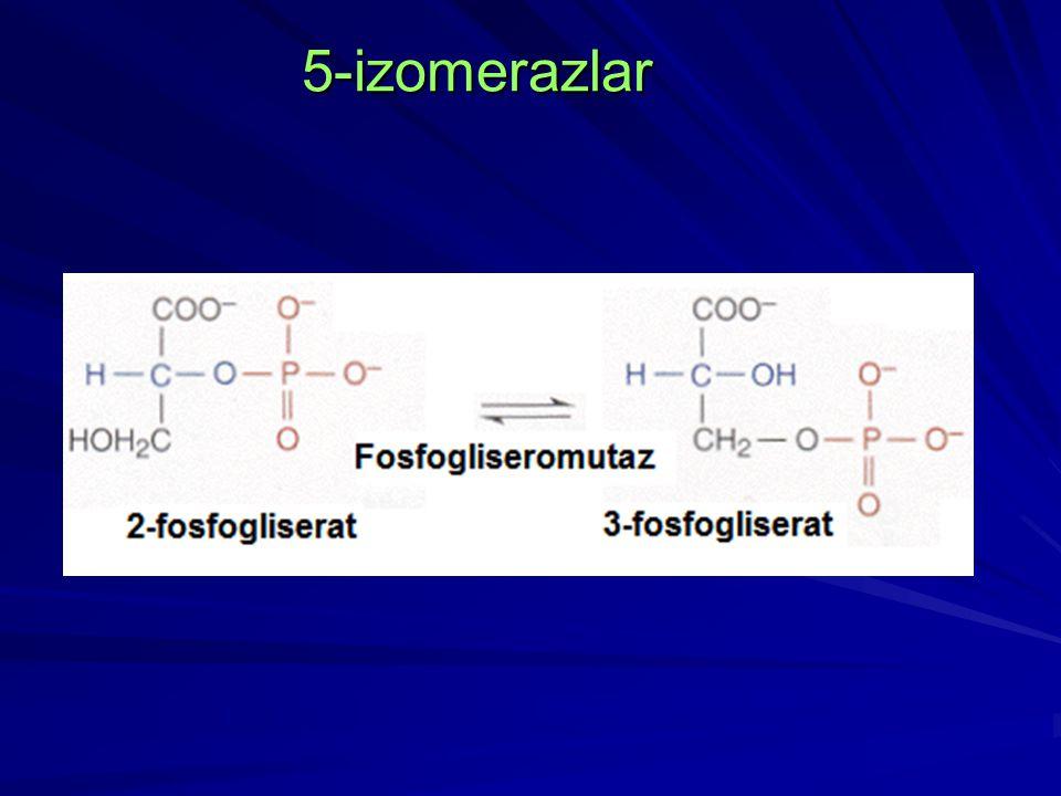 5-izomerazlar