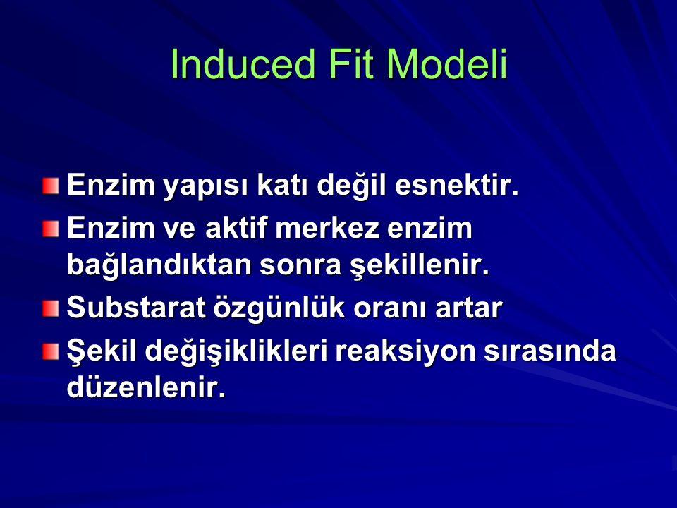 Induced Fit Modeli Enzim yapısı katı değil esnektir. Enzim ve aktif merkez enzim bağlandıktan sonra şekillenir. Substarat özgünlük oranı artar Şekil d
