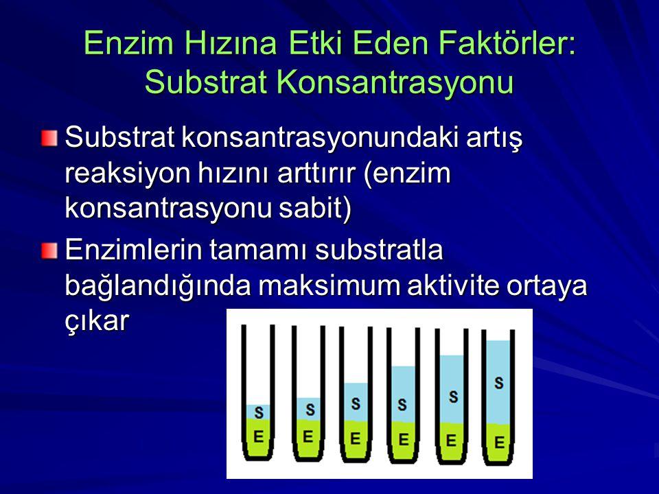 Enzim Hızına Etki Eden Faktörler: Substrat Konsantrasyonu Substrat konsantrasyonundaki artış reaksiyon hızını arttırır (enzim konsantrasyonu sabit) Enzimlerin tamamı substratla bağlandığında maksimum aktivite ortaya çıkar
