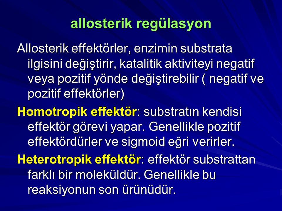 Allosterik effektörler, enzimin substrata ilgisini değiştirir, katalitik aktiviteyi negatif veya pozitif yönde değiştirebilir ( negatif ve pozitif effektörler) Homotropik effektör: substratın kendisi effektör görevi yapar.