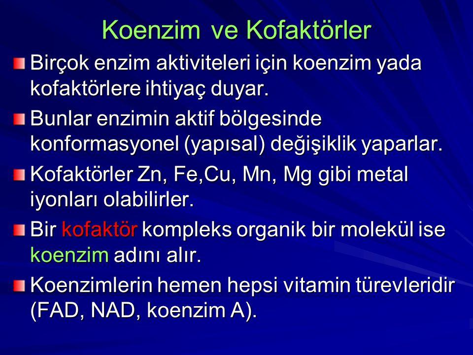 Koenzim ve Kofaktörler Birçok enzim aktiviteleri için koenzim yada kofaktörlere ihtiyaç duyar. Bunlar enzimin aktif bölgesinde konformasyonel (yapısal