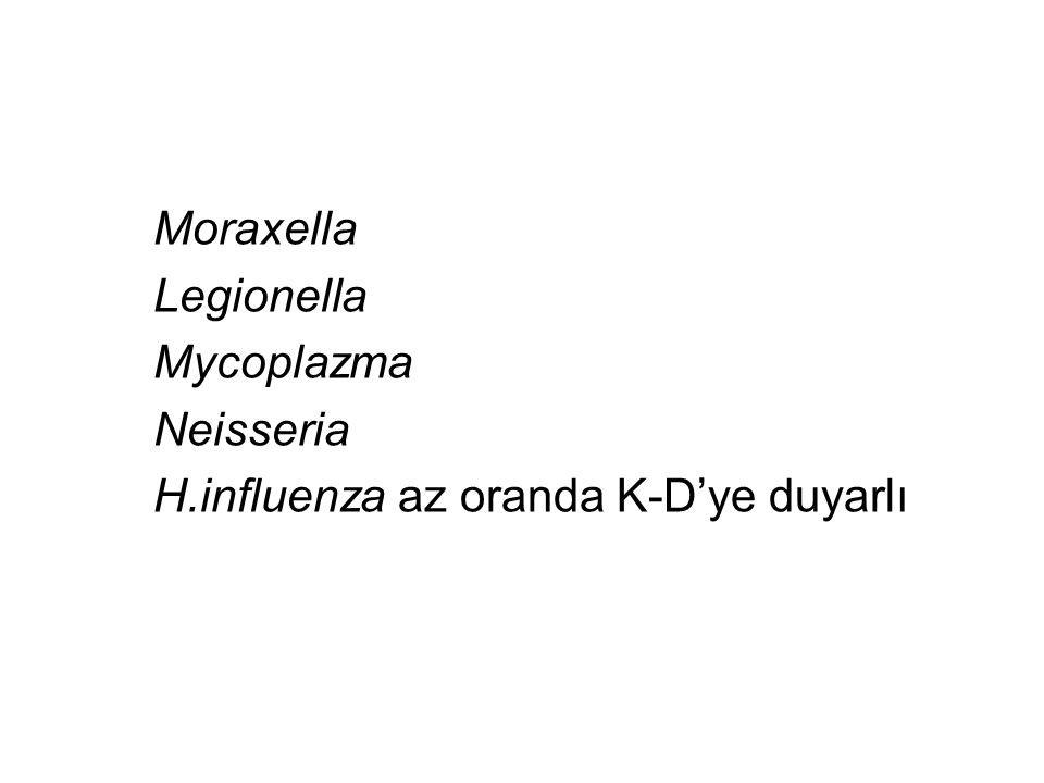 Moraxella Legionella Mycoplazma Neisseria H.influenza az oranda K-D'ye duyarlı