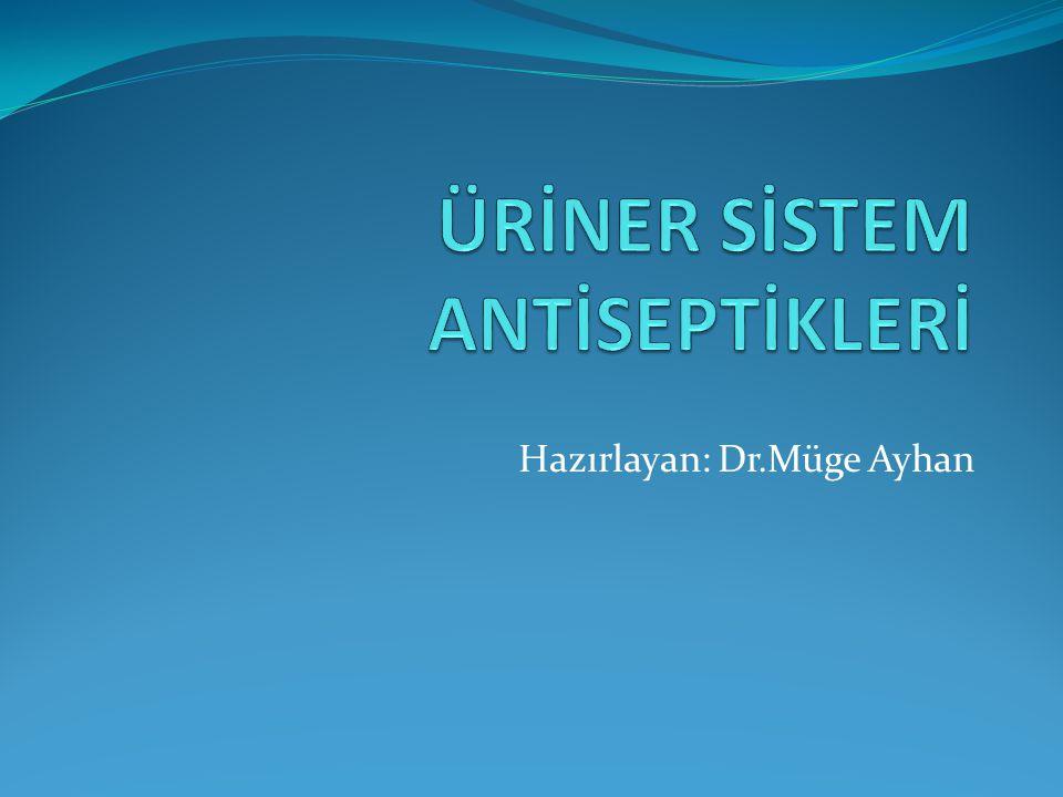 Üriner sistem antiseptikleri, vücutta fazla inaktive edilmeyen,böbreklerden çabuk itrah edilen ilaçlardır.