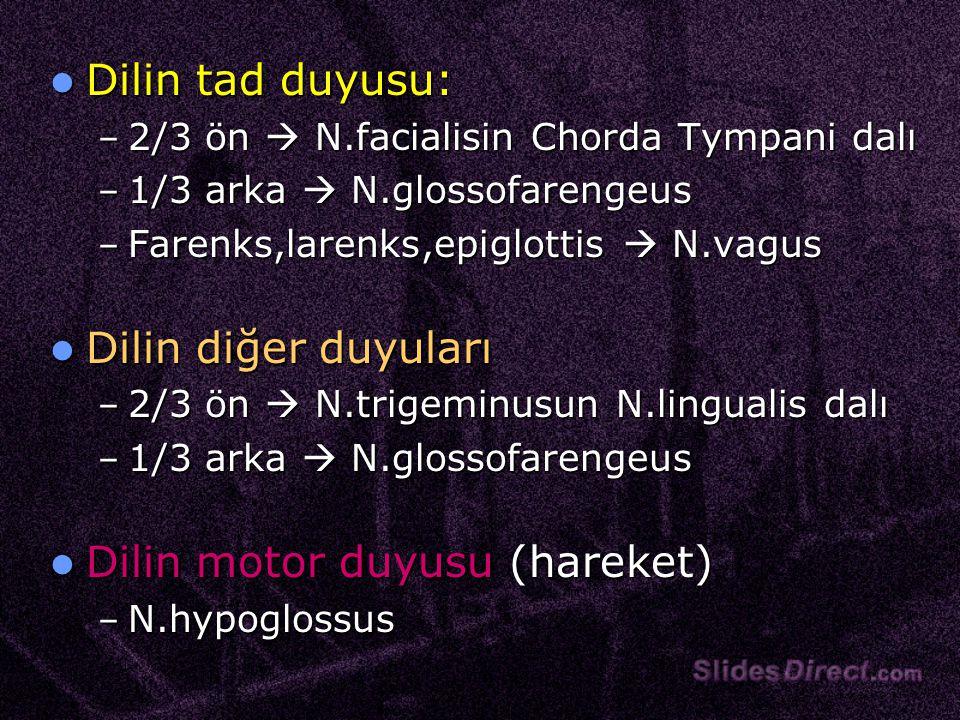 Dilin tad duyusu: Dilin tad duyusu: – 2/3 ön  N.facialisin Chorda Tympani dalı – 1/3 arka  N.glossofarengeus – Farenks,larenks,epiglottis  N.vagus Dilin diğer duyuları Dilin diğer duyuları – 2/3 ön  N.trigeminusun N.lingualis dalı – 1/3 arka  N.glossofarengeus Dilin motor duyusu (hareket) Dilin motor duyusu (hareket) – N.hypoglossus