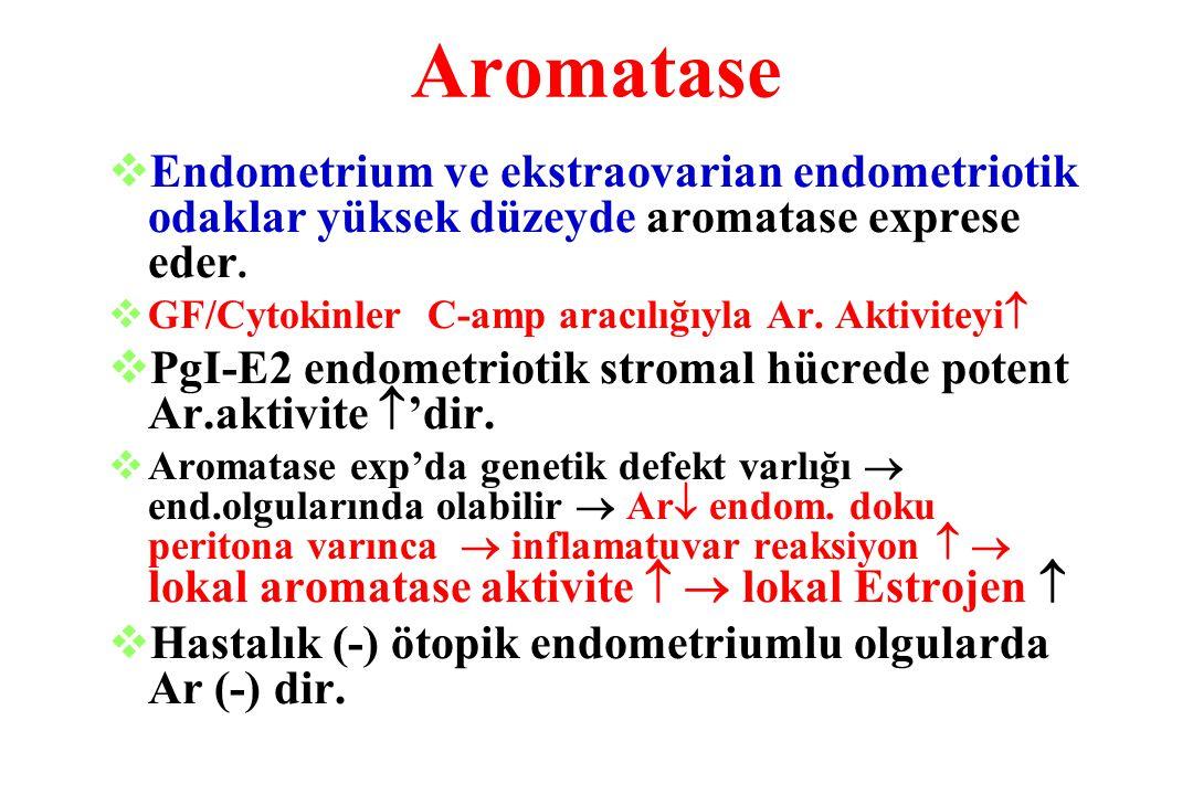 Aromatase  Endometrium ve ekstraovarian endometriotik odaklar yüksek düzeyde aromatase exprese eder.  GF/Cytokinler C-amp aracılığıyla Ar. Aktivitey