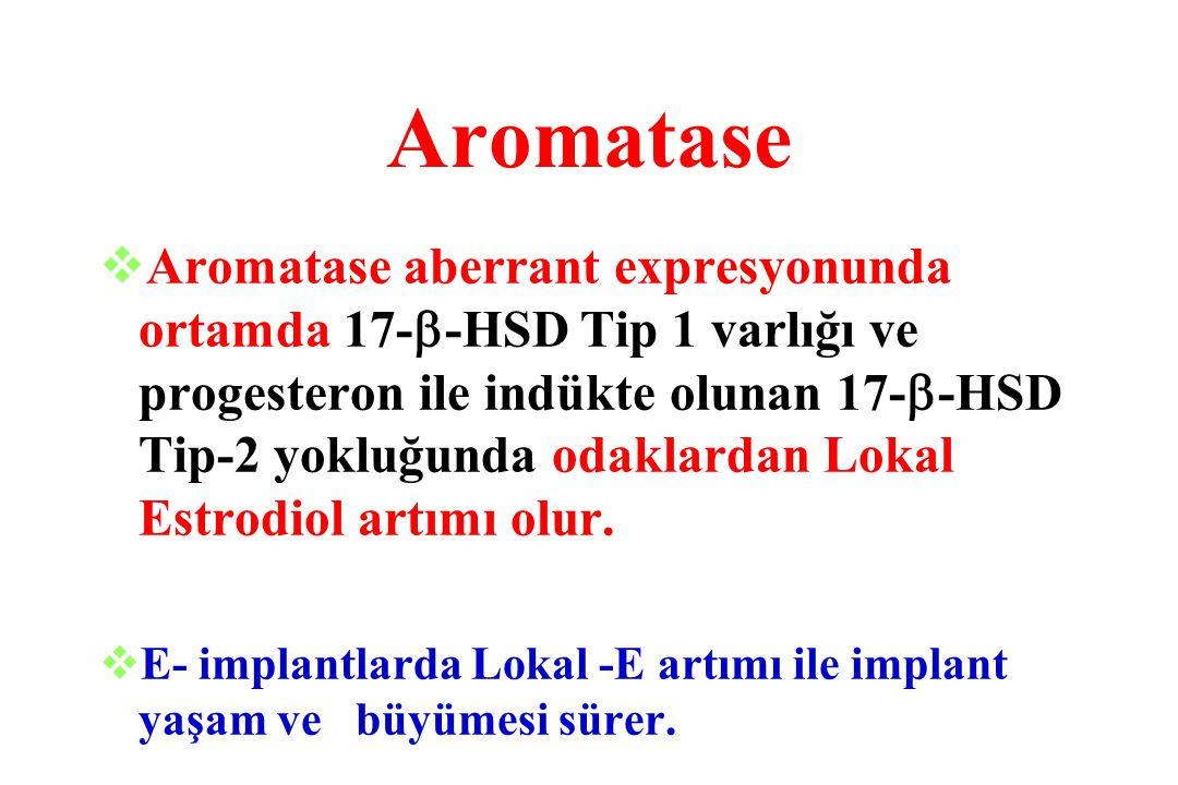 Aromatase vAromatase aberrant expresyonunda ortamda 17-  -HSD Tip 1 varlığı ve progesteron ile indükte olunan 17-  -HSD Tip-2 yokluğunda odaklardan