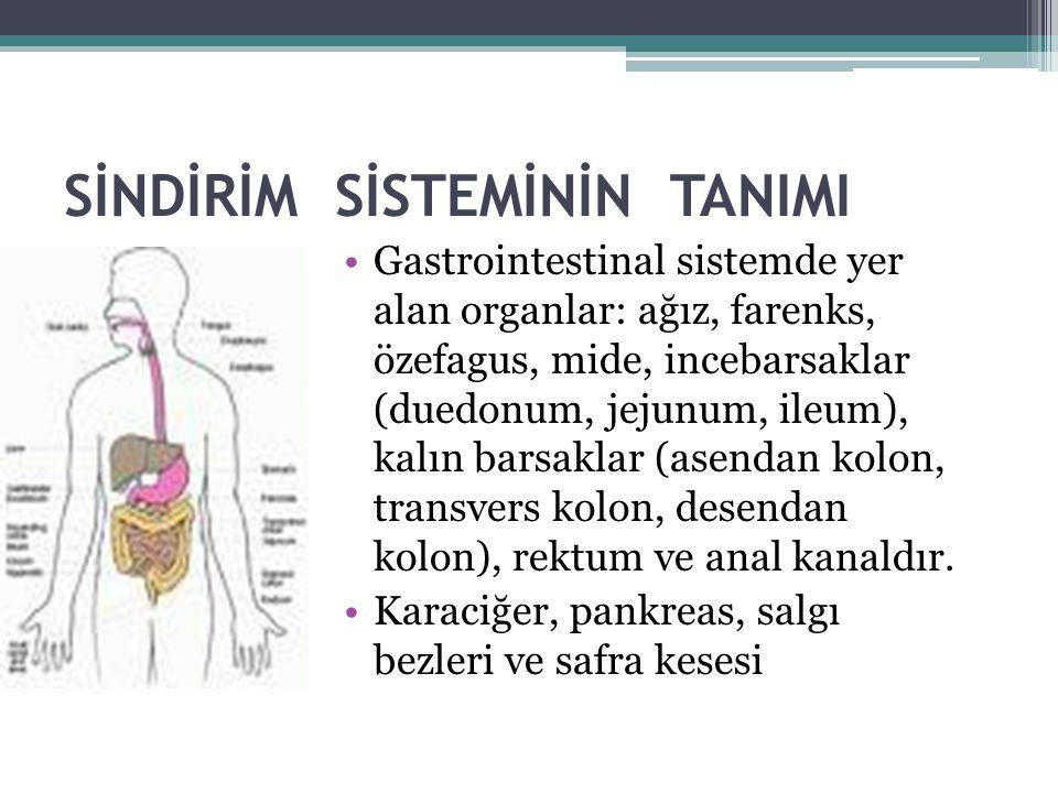 SİNDİRİM SİSTEMİNİN TANIMI Gastrointestinal sistemde yer alan organlar: ağız, farenks, özefagus, mide, incebarsaklar (duedonum, jejunum, ileum), kalın barsaklar (asendan kolon, transvers kolon, desendan kolon), rektum ve anal kanaldır.