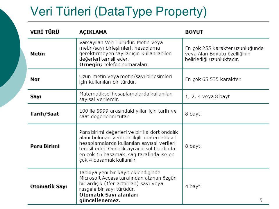 6 Veri Türleri (DataType Property) VERİ TÜRÜ AÇIKLAMABOYUT Evet/Hayır Evet ve Hayır değerleri ile iki değerden yalnızca birini içeren alanlar için kullanılır.