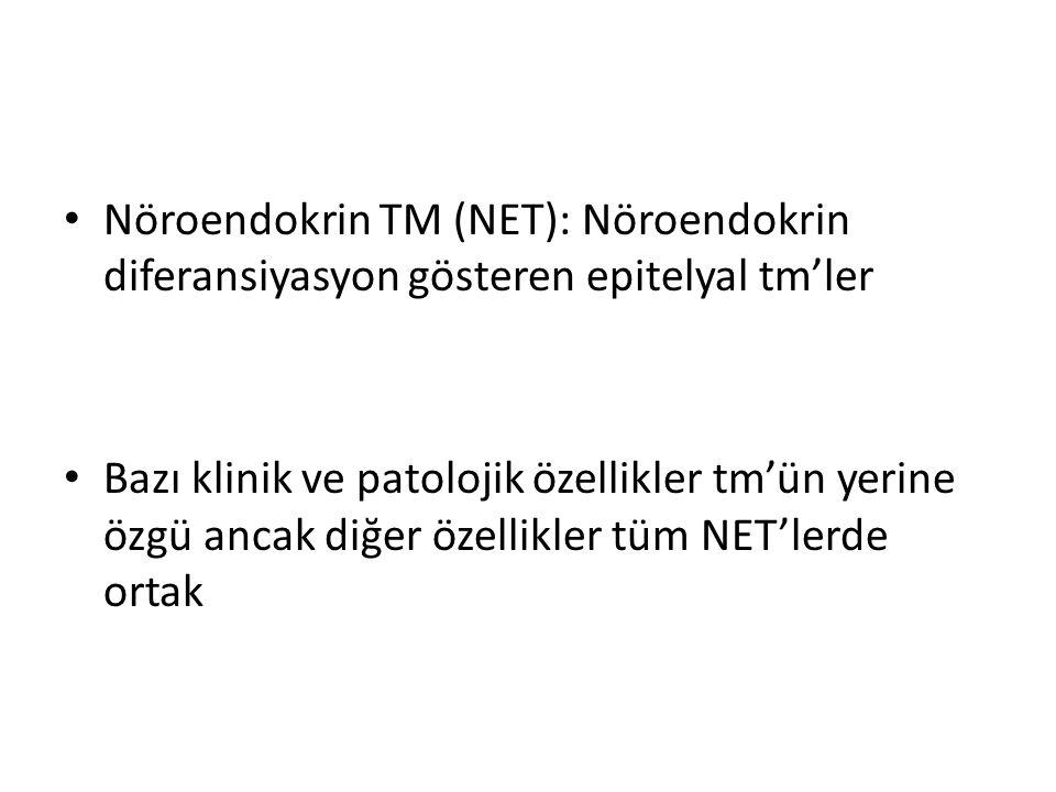 Nöroendokrin TM (NET): Nöroendokrin diferansiyasyon gösteren epitelyal tm'ler Bazı klinik ve patolojik özellikler tm'ün yerine özgü ancak diğer özelli