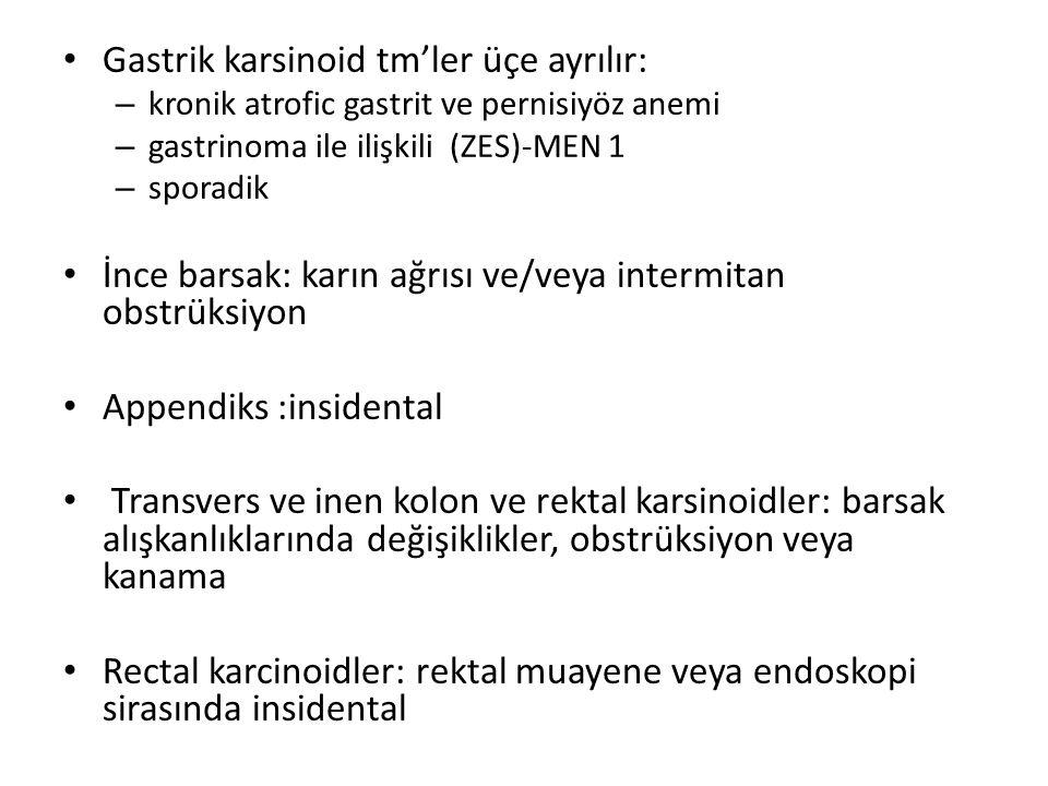 Gastrik karsinoid tm'ler üçe ayrılır: – kronik atrofic gastrit ve pernisiyöz anemi – gastrinoma ile ilişkili (ZES)-MEN 1 – sporadik İnce barsak: karın