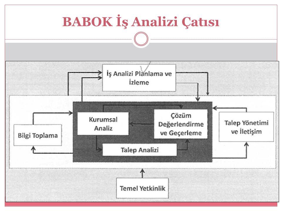 BABOK İş Analizi Çatısı
