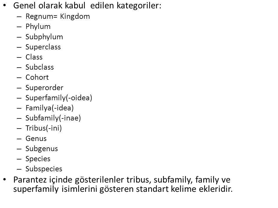 Genel olarak kabul edilen kategoriler: – Regnum= Kingdom – Phylum – Subphylum – Superclass – Class – Subclass – Cohort – Superorder – Superfamily(-oid
