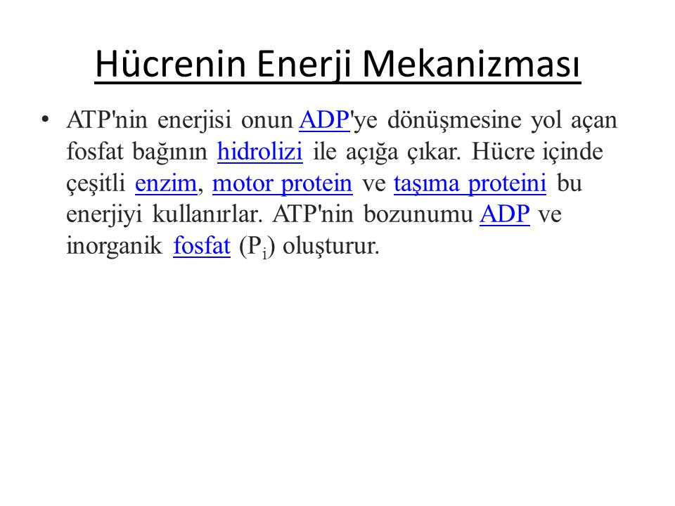 HÜCRENİN ENERJİ METABOLİZMASI ATP nedir ? En önemli işlevi hücre içi biyokimyasal reaksiyonlar için gereken kimyasal enerjiyi taşımaktır. Fotosentez v
