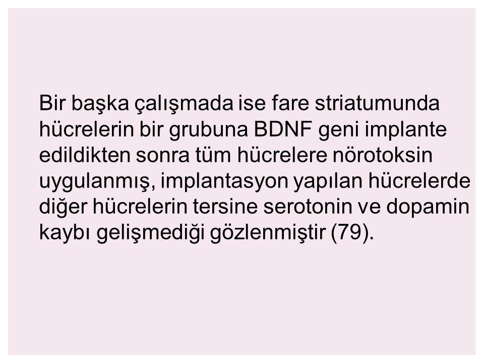 Bir başka çalışmada ise fare striatumunda hücrelerin bir grubuna BDNF geni implante edildikten sonra tüm hücrelere nörotoksin uygulanmış, implantasyon