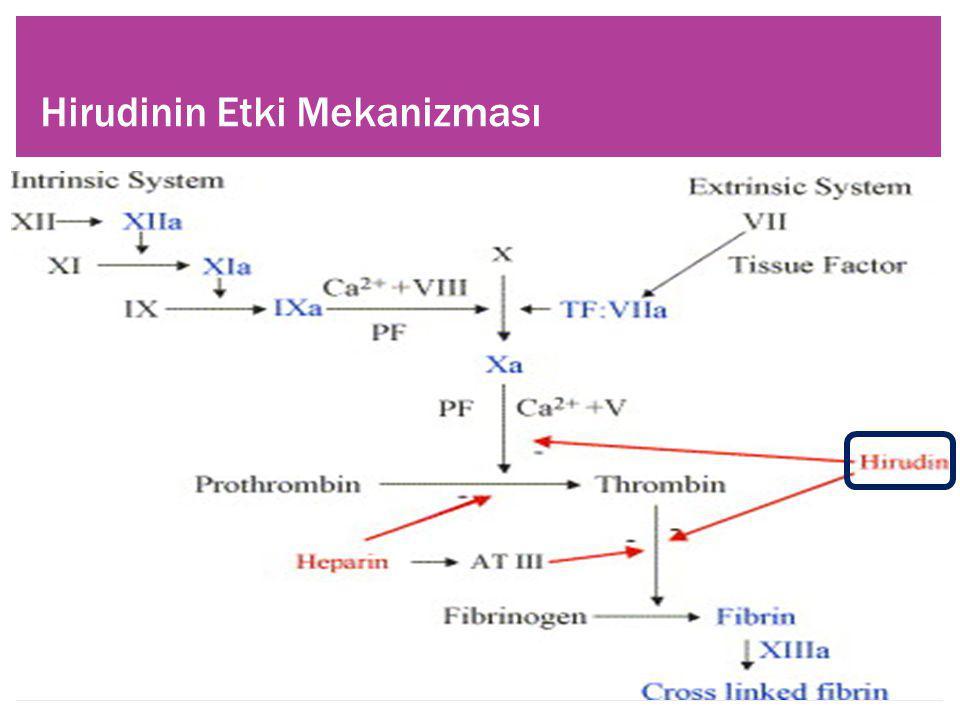  Nötrofil aracılı trombosit aktivasyonunu inhibe eder.