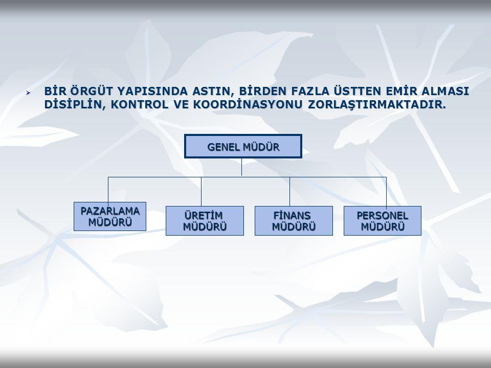 SPPC'nin Hibrit Organizasyonu BAŞKAN DANIŞMA ŞEFİ İNSAN KAY.