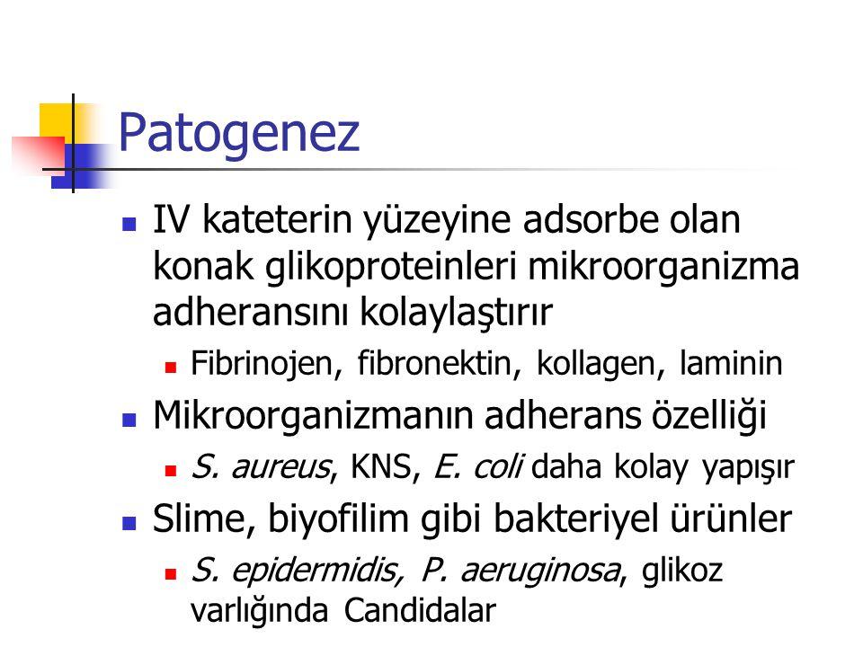 Patogenez IV kateterin yüzeyine adsorbe olan konak glikoproteinleri mikroorganizma adheransını kolaylaştırır Fibrinojen, fibronektin, kollagen, lamini
