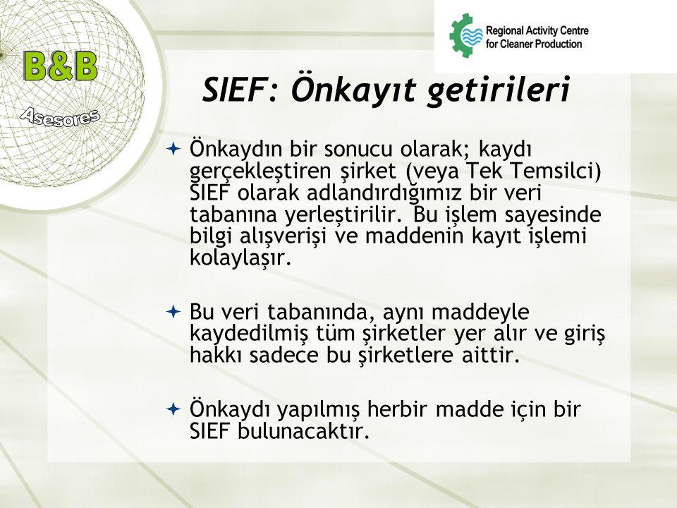 SIEF: Önkayıt getirileri  Önkaydın bir sonucu olarak; kaydı gerçekleştiren şirket (veya Tek Temsilci) SIEF olarak adlandırdığımız bir veri tabanına y