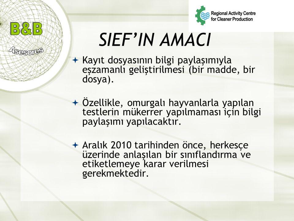 SIEF'IN AMACI  Kayıt dosyasının bilgi paylaşımıyla eşzamanlı geliştirilmesi (bir madde, bir dosya).  Özellikle, omurgalı hayvanlarla yapılan testler