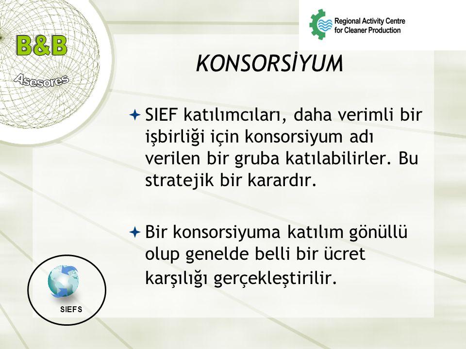 KONSORSİYUM  SIEF katılımcıları, daha verimli bir işbirliği için konsorsiyum adı verilen bir gruba katılabilirler. Bu stratejik bir karardır.  Bir k