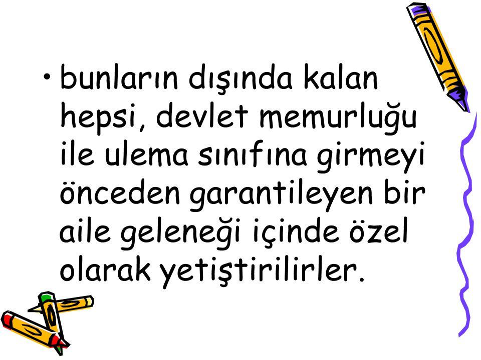 «Her taşımız bir nice bin cânedir» dedikleri Osmanlı ülkesinin bütünlüğü, bütün Tanzimatçıların baş tutkusudur.