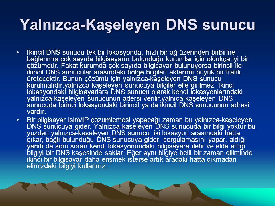 Yalnızca-Kaşeleyen DNS sunucu İkincil DNS sunucu tek bir lokasyonda, hızlı bir ağ üzerinden birbirine bağlanmış çok sayıda bilgisayarın bulunduğu kuru