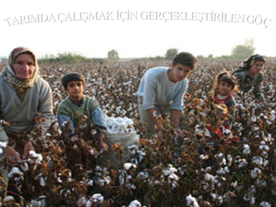 Mevsimlik olarak tarımsal iş gücü ihtiyacının karşılanması yaylacılık veya turizm amaçlı nüfus değişmelerine yol açar.