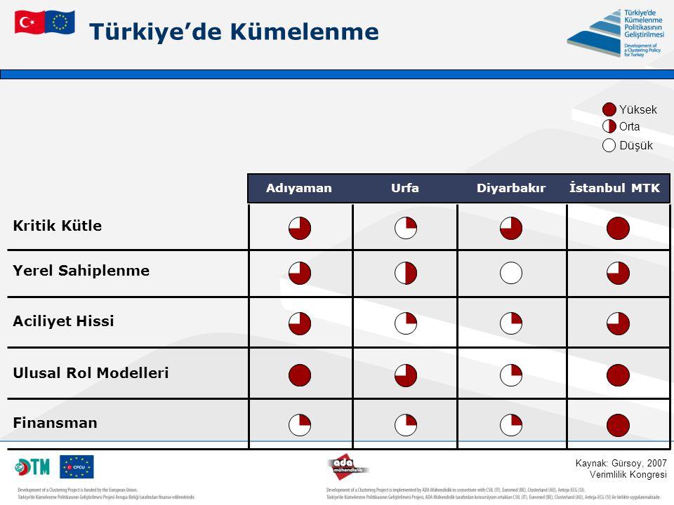 Türkiye'de Kümelenme Kritik Kütle Yerel Sahiplenme Aciliyet Hissi Ulusal Rol Modelleri Finansman AdıyamanUrfaDiyarbakırİstanbul MTK Kaynak: Gürsoy, 20